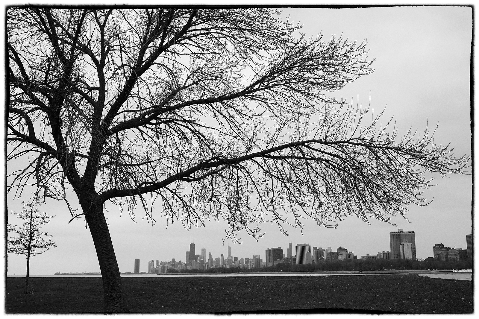 View of the Chicago Skyline in the winter